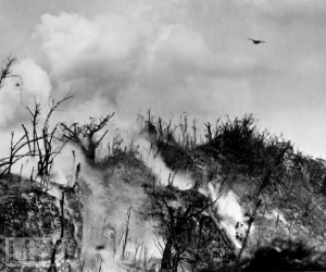 battle for Peleliu