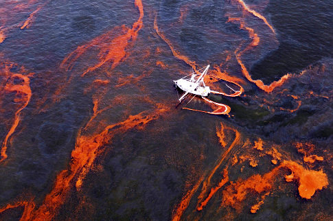 Ocean Conservation for BP Gulf of Mexico Oil Spill