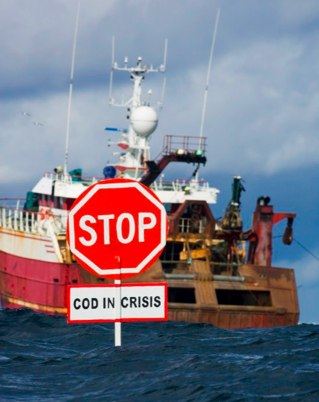 greenpeace cod fishing images - Google Search