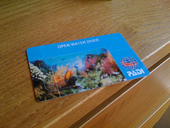 Top 25 Questions On Dive Travel 17 Does My Certification Expire